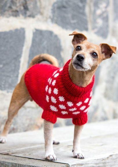 Snøballgenser til hund (Rød)